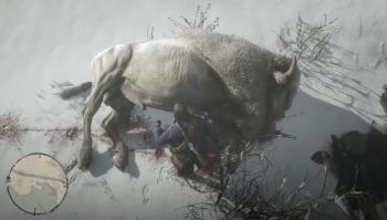 Emplacement bison blanc légendaire, red dead redemption 2, rockstar games, carte, animaux légendaire, soluce