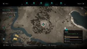 Assassin Creed Valhalla, la colère des druides enfant du danu soluce guide , Leasleach la folle des marais, Le Murmure, indice emplacement location cart